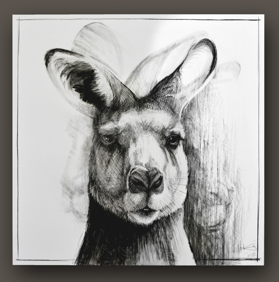 Portrait of Kangaroo No. 16