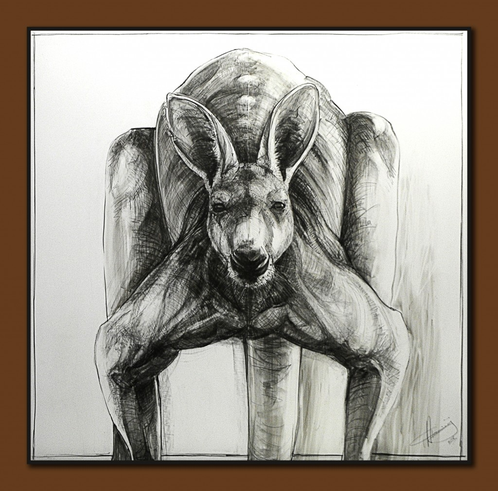 Portrait Drawing of Kangaroo 30 a