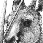 Detail D of Portrait of Kangaroo 45 by Michael Chorney