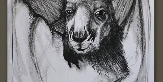Kangaroo drawing 10 by Michael Chorney