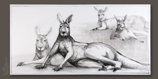 Kangaroo drawing 3 by Michael Chorney