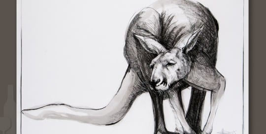 Kangaroo drawing 4 by Michael Chorney