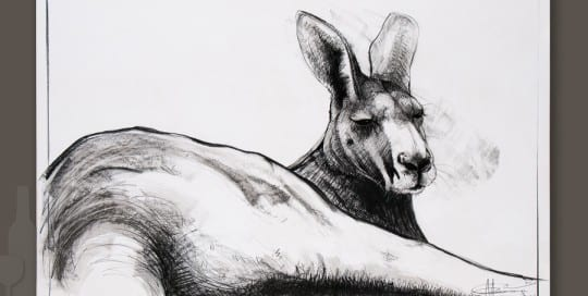 Kangaroo drawing 6 by Michael Chorney